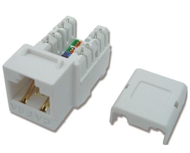 Modular Jack - CAT.6A DINTEK socket (1305-05008)