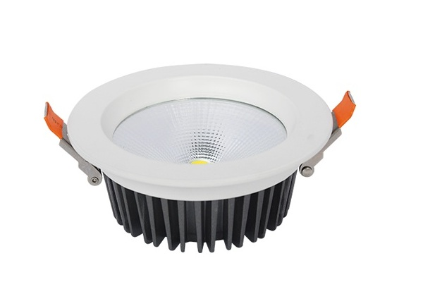 Đèn LED âm trần 20W VinaLED DL-RW20