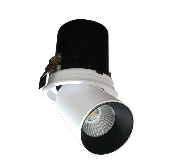 10W VinaLED TR-PW10 / TR-PB10 LED light